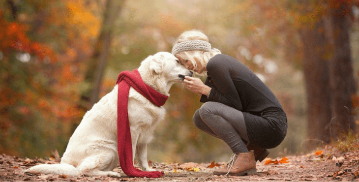 Tips for moving on when your pet been gone